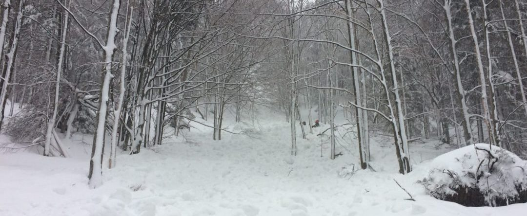 Schnee wie selten zuvor