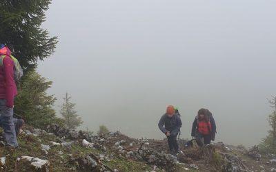 Unterwegs mit der Mitterbacher Bergrettungsjugend